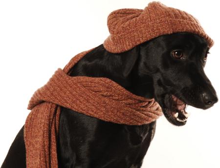 Warm anziehen